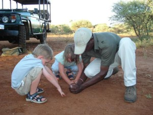 kids_safari
