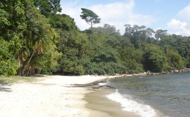 2 Rubondo Island Lake Beach