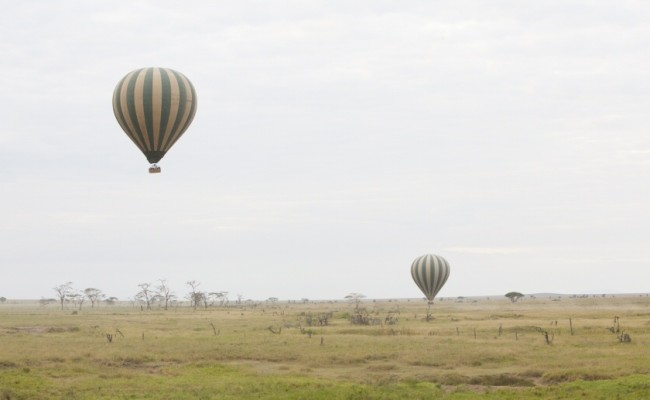 Serengeti – Asilia – Dunia Balloon Safari